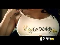Go Daddy 45 Million Domain Name Registrations