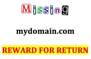 6 Ways to Recover a Domain Name from an Infringing Cybersquatter