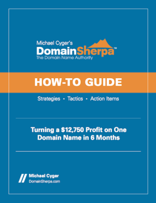 Turning a $12,750 Profit on One Domain Name in 6 Months