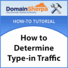 How to Determine a Domain Name's Type-in Traffic